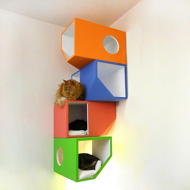 25560422 161405 Catissa – บ้านสไตล์โมเดิร์น 4 ชั้น สำหรับแมวเหมียว