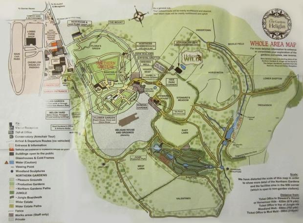 25560430 133753 The Lost Gardens of Heligan...สวนอายุ 400ปี ที่หายไปจากโลกนี้เกือบ 100ปี