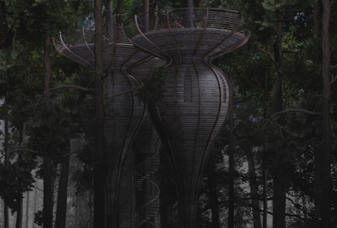 gibbon-ROOST-Treehouse-3