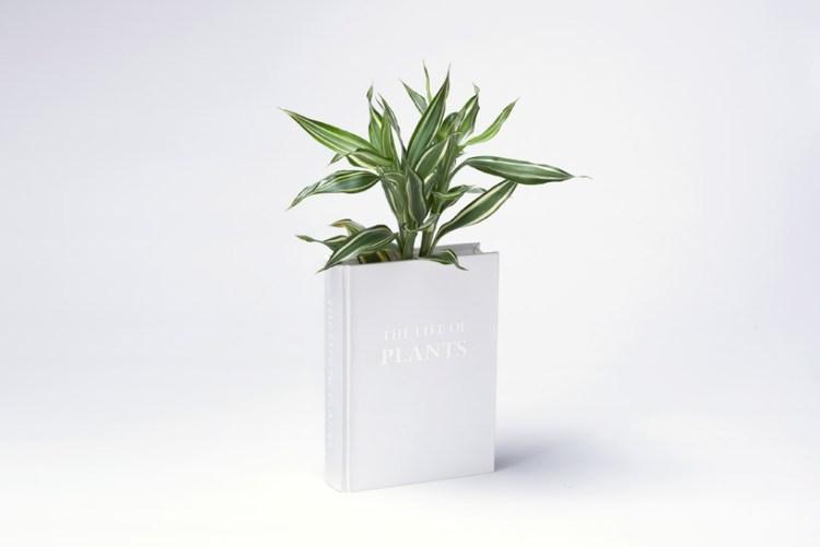 yoybook03 750x501 Book planter นี่หนังสือ หรือ กระถางต้นไม้ ดีไซน์การปลูกต้นไม้จาก YOY studio, Japan