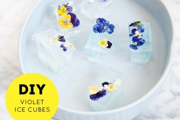 DIY ดอกไม้ในน้ำแข็ง..แค่เห็นก็หายร้อน 12 - DIY