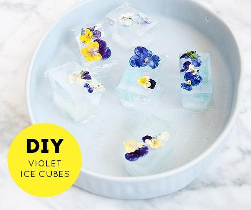 DIY ดอกไม้ในน้ำแข็ง..แค่เห็นก็หายร้อน 14 - flower ice cube