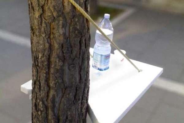 25560528 152514 DIY Tree Seat..ถ้ามีต้นไม้ ก็มีฉัน..