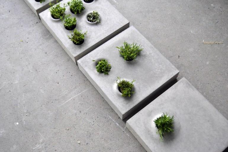 Grey To Green แผ่นกระเบื้องคอนกรีตปูพื้นทางเดินให้สามารถปลูกต้นไม้ต้นเล็กๆในหลุมปลูกได้  13 - Caroline Brahme