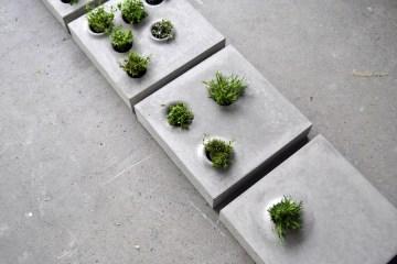 Grey To Green แผ่นกระเบื้องคอนกรีตปูพื้นทางเดินให้สามารถปลูกต้นไม้ต้นเล็กๆในหลุมปลูกได้