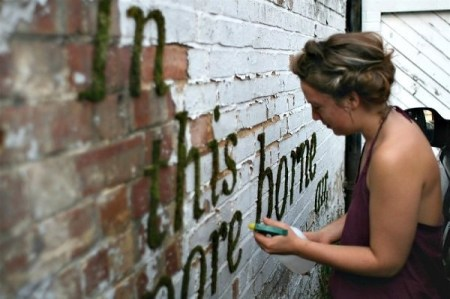 image15 450x299 Moss graffiti ศิลปะตกแต่งกำแพงแบบใกล้ชิดธรรมชาติ