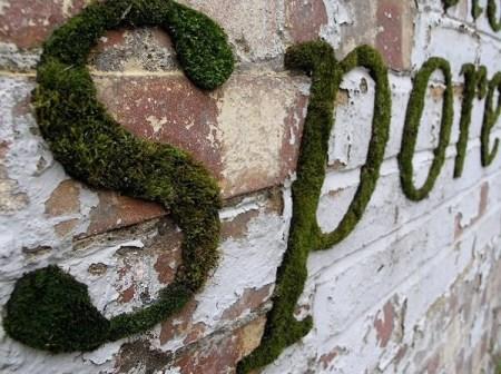 image18 450x336 Moss graffiti ศิลปะตกแต่งกำแพงแบบใกล้ชิดธรรมชาติ
