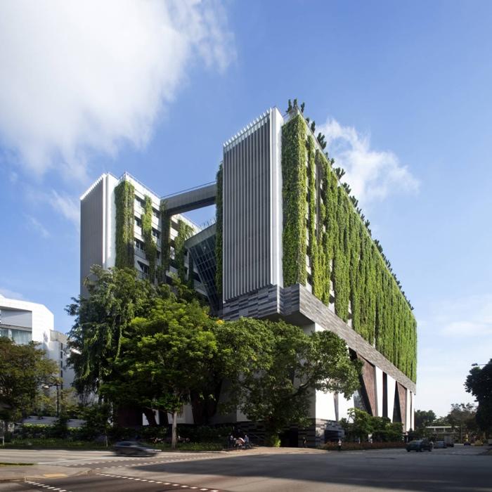25560602 085321 School of the Arts ในประเทศสิงคโปร์ เมื่อศิลปะรับใช้ชุมชน และชุมชนสร้างศิลปะ