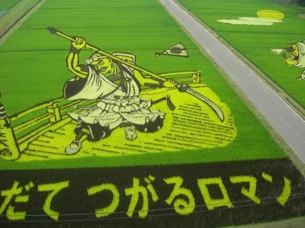 25560629 144716 ศิลปะบนแปลงนาข้าว ของญี่ปุ่น...เกินคำบรรยาย..