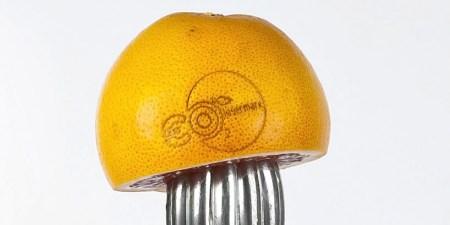 fruit-laser-labels-designboom02
