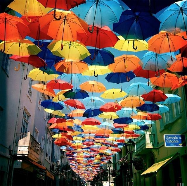 25560710 192207 ถนนที่คลุมด้วยร่มในโปรตุเกสกลับมาอีกครั้งในปีนี้ สีสันแตกต่างจากเดิม แต่ยังสวยสดใสเหมือนเดิม