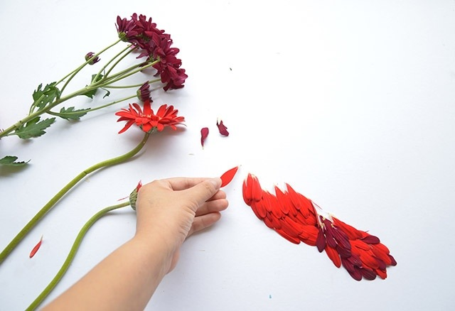 25560720 085118 ชมภาพศิลปะบนInstagram..ภาพนกหลากหลายจากกลีบดอกไม้และใบไม้