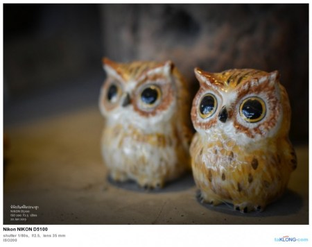 156507DSC 0097 450x356 พิพิธภัณฑ์ศิลปะนกฮูก Owl Art Museum