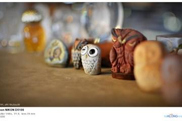 พิพิธภัณฑ์ศิลปะนกฮูก Owl Art Museum 2 - Owl Art Museum