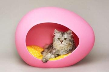 ที่นอนรูปไข่ ดูมีสไตล์ สำหรับสัตว์เลี้ยงแสนรัก 17 -