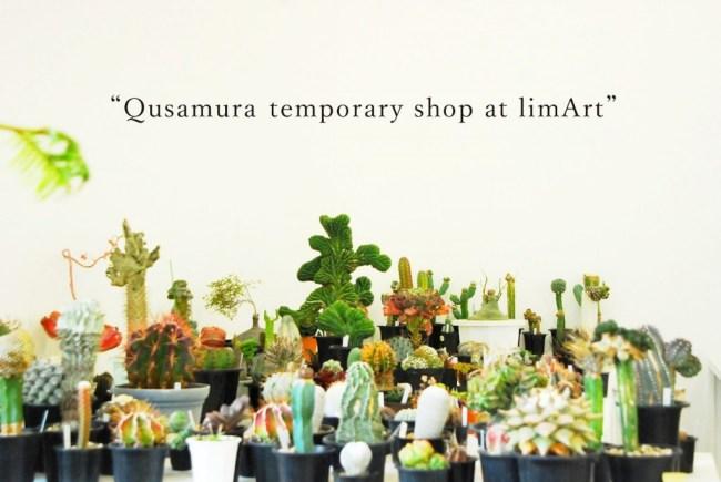 000 650x435 Qusamura นักจัดดอกไม้ ที่ชื่นชอบในความงามของต้นกระบองเพชร