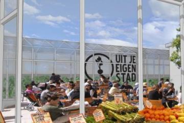 Urban farming ฟาร์มในเมือง 30 - Green