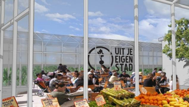 Urban farming ฟาร์มในเมือง 27 - Green