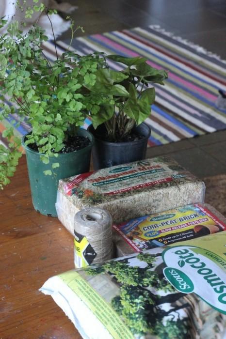 25570108 231703 DIY string garden..สวนแขวน จากกระถางเชือก และไหมพรม