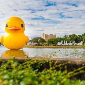 Giant Rubber Duck floats Udon Thani pride เป็ดยักษ์ ล่องลอยที่ จ.อุดรธานี 14 - duck