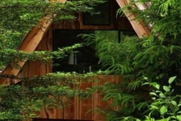บ้านในป่าที่สร้างด้วยตัวเอง ใช้วัสดุในท้องถิ่น ตามแนวคิด sustainable 16 - INSPIRATION