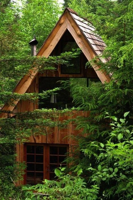 25570206 164715 บ้านในป่าที่สร้างด้วยตัวเอง ใช้วัสดุในท้องถิ่น ตามแนวคิด sustainable