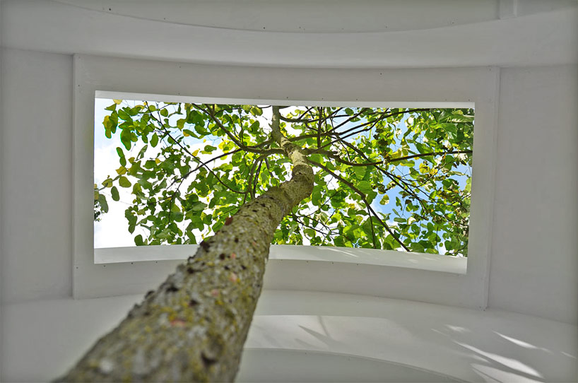 love-tree-by-rob-sweere-designboom-02