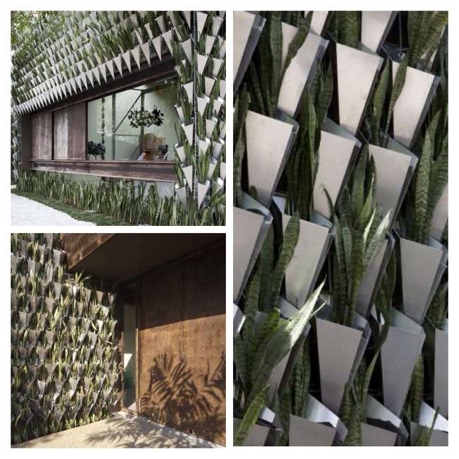 25570402 193821 สวนแนวตั้ง จากกระถางอลูมินัมและต้นไม้ 6,000 ต้น ที่ Firma Casa