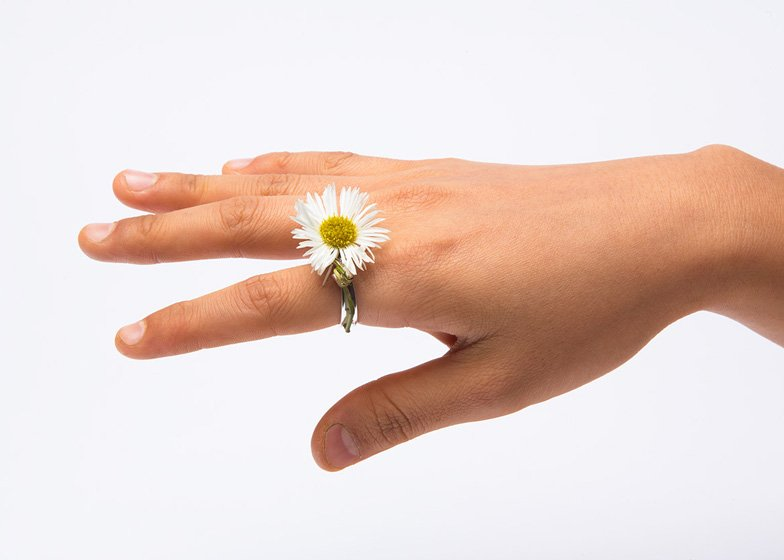 Spring rings by Gahee Kang incorporate flowers dezeen ss 3 Blooming Jewelry, Spring rings by Gahee Kang