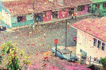 เมื่อภูเขาไฟระเบิดเป็น 8 ล้านกลีบดอกไม้ ปกคลุมทั่วหมู่บ้านใน Costa Rica 20 - Sony (โซนี่)