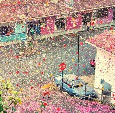 เมื่อภูเขาไฟระเบิดเป็น 8 ล้านกลีบดอกไม้ ปกคลุมทั่วหมู่บ้านใน Costa Rica 26 - Sony (โซนี่)