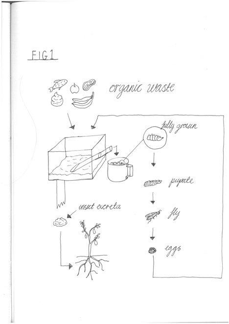 20140505 091942 Fly Factory ..โรงงานผลิตแมลง..รสชาติดีเหมือนไก่..แหล่งผลิตอาหารอนาคต