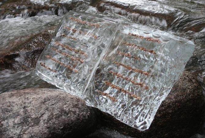 20140518 074417 ลอยหนังสือน้ำแข็งที่มีเมล็ดพันธุ์ต้นไม้ สู่สายน้ำ เพื่อสร้างจิตสำนึกรักษ์โลก..รักษ์น้ำ