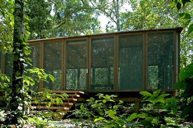 20140527 145732 53852046 บ้านในป่าร้อนชื้น โปร่งโล่ง กันแมลงแต่ไม่กั้นลม แสงสว่าง และธรรมชาติ