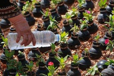 ชาวปาเลสไตน์ในเขต West Bank สร้างสวนที่เป็นอนุสรณ์จากปลอกกระสุนแก๊สน้ำตา  20 - กระถางต้นไม้