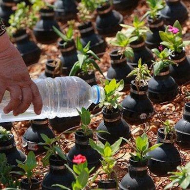 ชาวปาเลสไตน์ในเขต West Bank สร้างสวนที่เป็นอนุสรณ์จากปลอกกระสุนแก๊สน้ำตา 14 - west bank