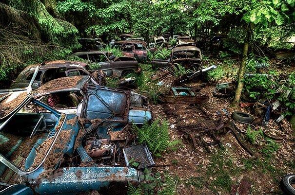 20140724 122334 44614062 การจราจรติดขัดในป่าที่เบลเยียมเป็นเวลา กว่า 70 ปี