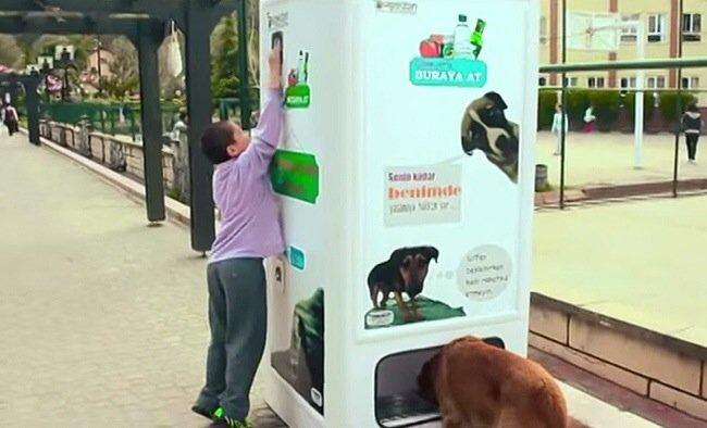 หยอดขวดพลาสติกใช้แล้วในตู้ Vending Machine ให้อาหารและน้ำกับสุนัขจรจัด 13 - รีไซเคิล