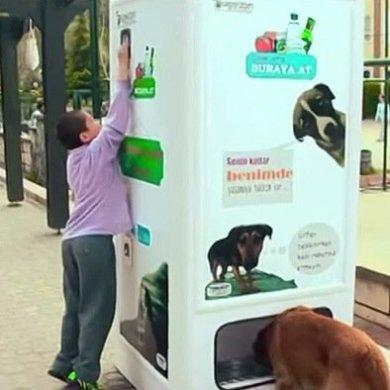 หยอดขวดพลาสติกใช้แล้วในตู้ Vending Machine ให้อาหารและน้ำกับสุนัขจรจัด 14 - รีไซเคิล