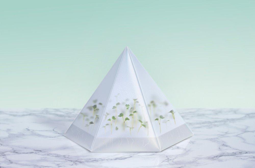 tomorrow machine microgarden 1 The Micro Garden of Tomorrow การปลูกพืชในร่ม