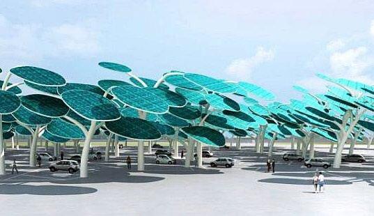 IMG 4334 ป่าผลิตพลังงานแสงอาทิตย์ ..และที่จอดรถ