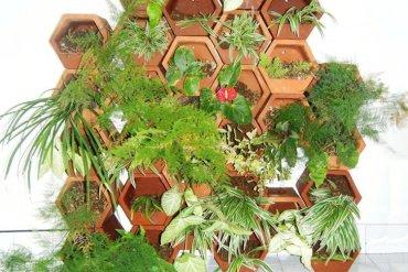 สวนแนวตั้ง..Green Wall จากกระถางดินเผา 15 - vertical garden