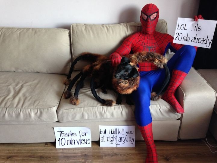 IMG 5230 สุดยอดไวรัลคลิป..Giant Spider Dog เมื่อสุนัขแต่งชุดแมงมุมยักษ์ออกอาละวาดทั่วเมือง