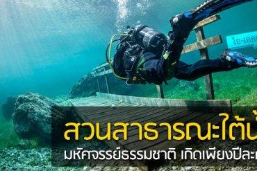 สวนสาธารณะใต้น้ำ มหัศจรรย์ธรรมชาติสุดงดงามที่เกิดเพียงปีละครั้ง 13 - flood