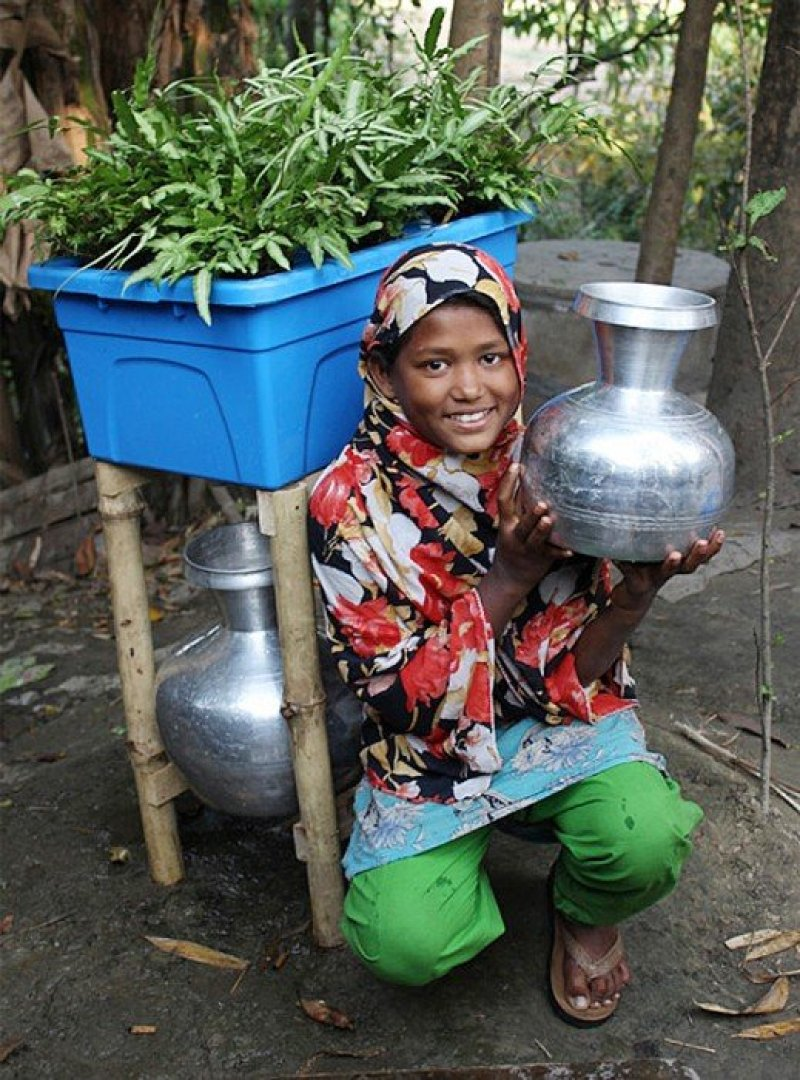 dezeen_Plant-based-water-purifying-system-named-Idea-that-will-change-the-world_1