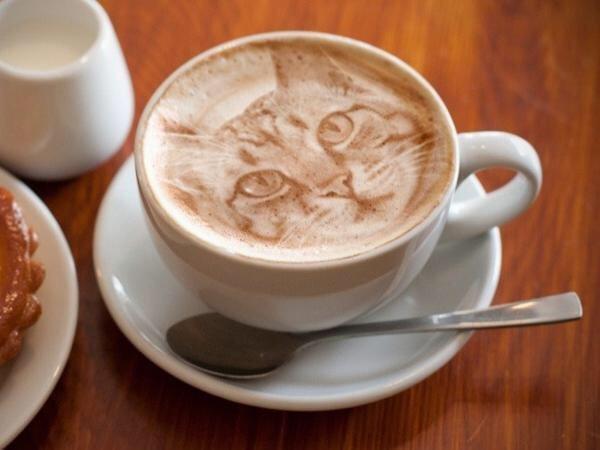 IMG 7087 Latte Art ภาพแมวบนฟองนม.. ฝีมือขั้นเทพ! ... แต่แหม ใครสังเกตดีๆ มาจับผิดกัน