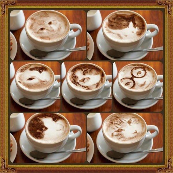 IMG 7089 Latte Art ภาพแมวบนฟองนม.. ฝีมือขั้นเทพ! ... แต่แหม ใครสังเกตดีๆ มาจับผิดกัน