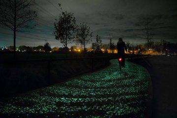ทางจักรยานส่องสว่างในตัวเอง จากพลังงานแสงอาทิตย์ งดงามเหมือนภาพ Starry Night 11 - van gogh