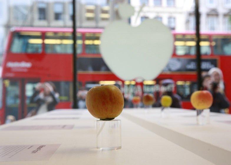 IMG 7750 นี่สิต้นตำรับแอปเปิ้ลแท้ๆ..The Real Apple Store