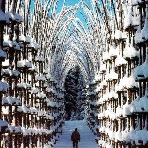 """""""โบสถ์ต้นไม้""""..ตัวอย่างงาน""""natural architecture""""ที่น่าประทับใจที่สุดในโลกชิ้นหนึ่ง  16 - Architecture"""